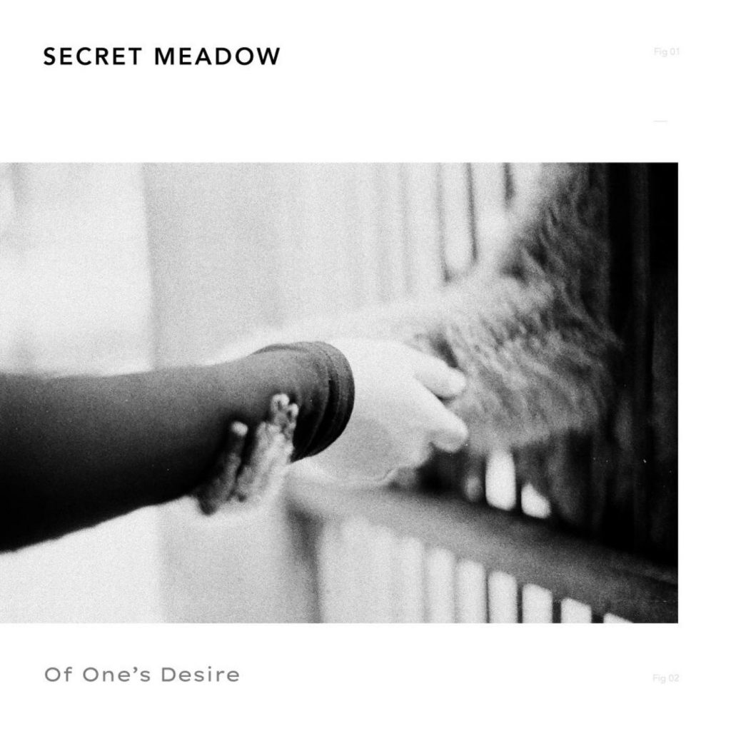 Secret-Meadow-Of-Ones-Desire-Artwork